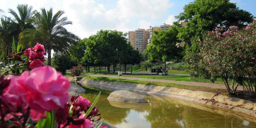Сады Турии (Jardines del Turia). Валенсия